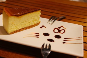 チーズケーキとチョコソース