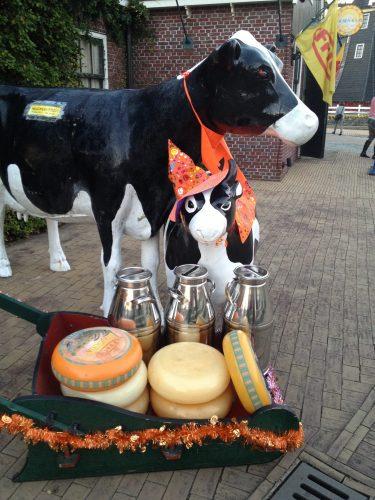 ハロウィンの仮装をした牛